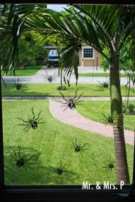 spiders are ready for Halloween in the hood