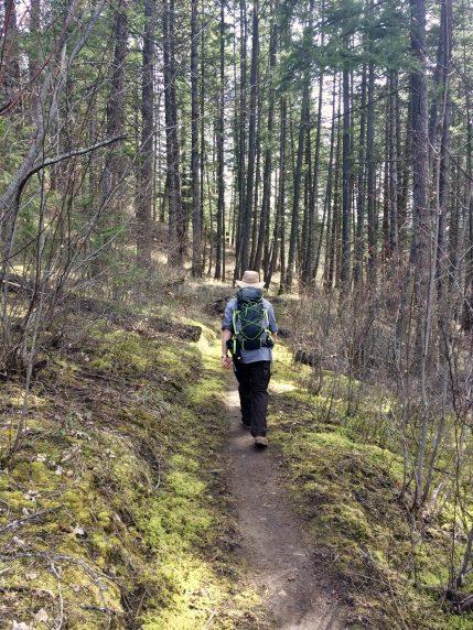 Hiking along the Syringa Trail