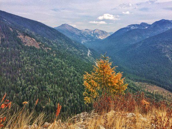 Looking at Kootenay Pass