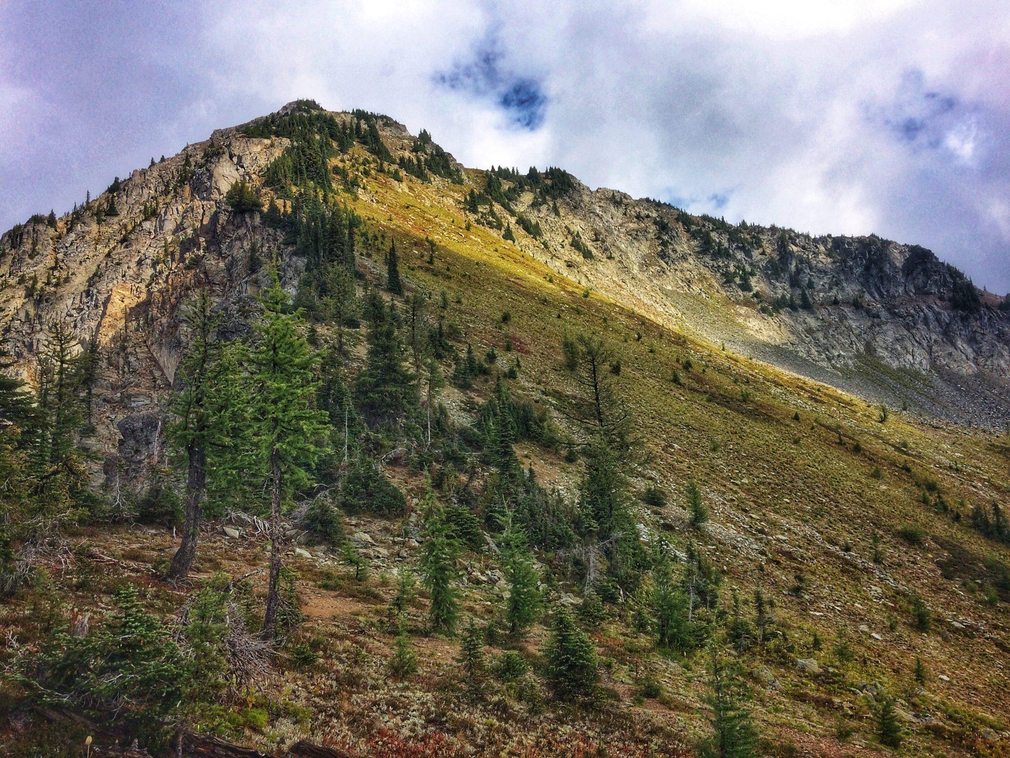 Mount Jardine