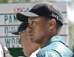Tiger Receives Advice from an Experienced Pro