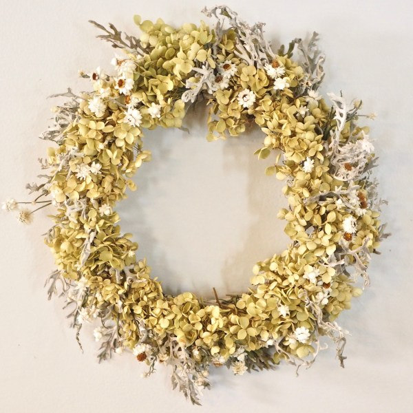 Wreath Hydrangea, Ammobium, and Dusty Miller Dried