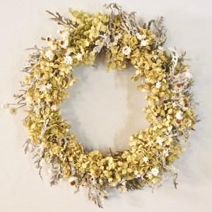 Wreath Hydrangea, Ammobium, and Dusty Miller Dried
