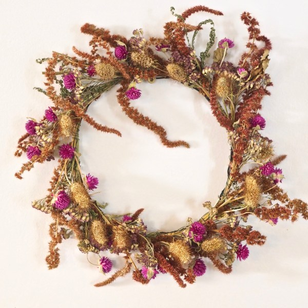Dried Wreath Amaranth and Gomphrena