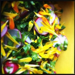 marigold salad