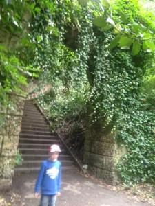 armley park 2