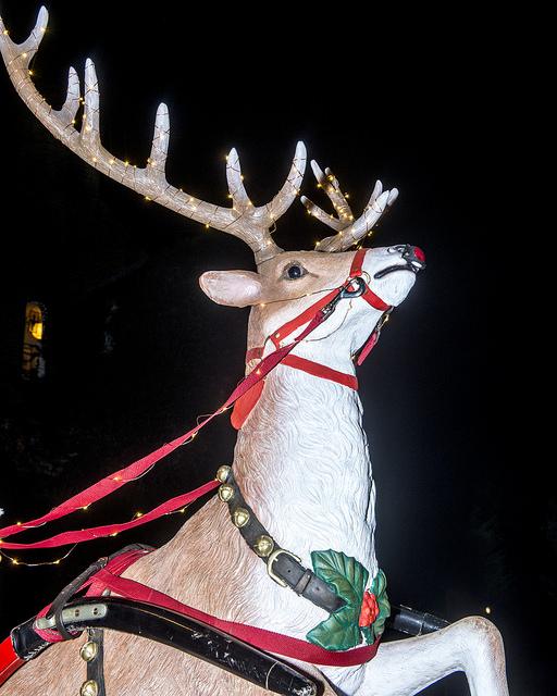 Farsley christmas lights