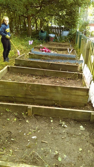 armley primary school veg garden work