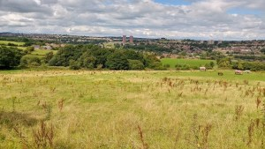 farnley view