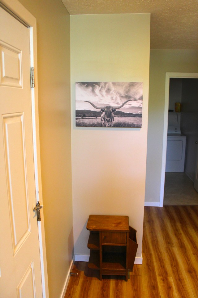 Parasail-Hallway-Steer-May-14-2019