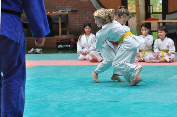 Martial arts is typical of a sport on offer through charitable partnerships Credit: Stefan Schmitz