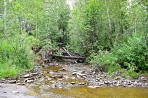Creek Where Caribou Used to Cross