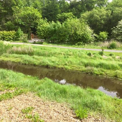 The stream at Weston Shore