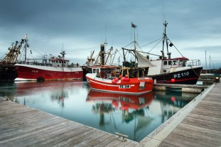 Fishing vessels in Newlyn harbour.