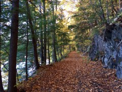 west-river-trail-autumn-2016-5