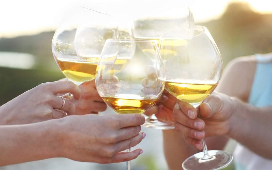 Tennis Social + Wine Tasting