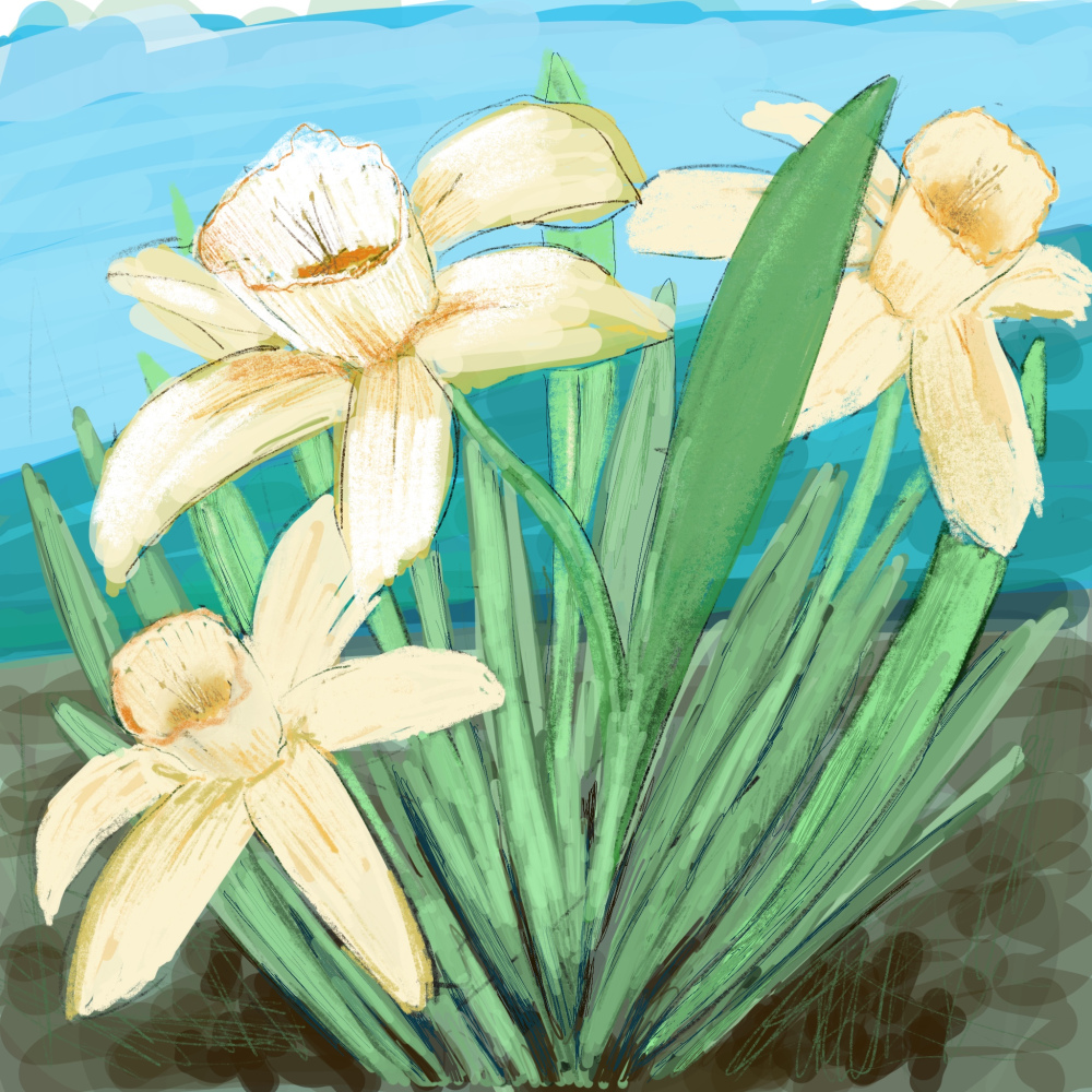 Daffodils by the Beach