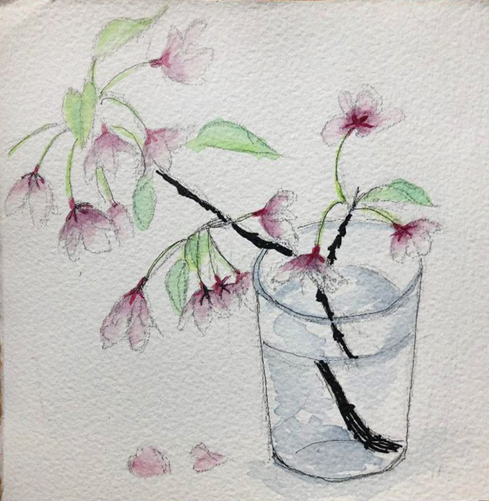 Cherry Blossoms Watercolor on paper
