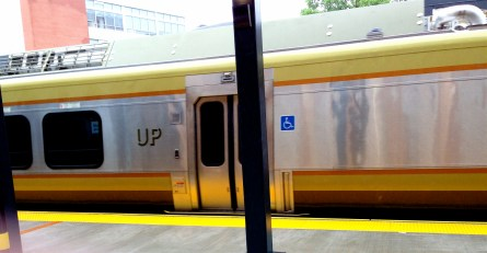 my first view of an UP train, as it speeds off