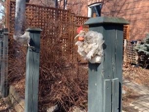 Slightly goofy upcycled plastic bag chicken on a fence post! (Don't even ask!)