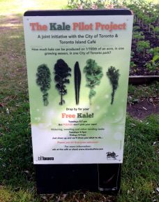 In case you want to learn more about the Kale Project...