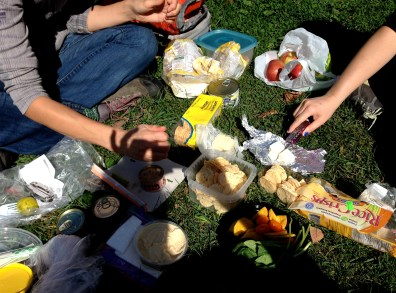 We share an amazing picnic in the sunshine.