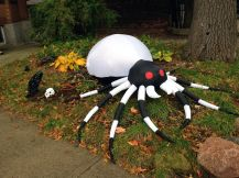 And then the Hallowe'en fun began. Here, a spooky spider - about five feet across. Ouch!