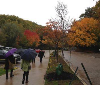 Skylar, Julie, Dana, Elizabeth, head to the little High Park Zoo as a light rain begins.