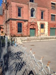 Lovely old harbour/track area building awaiting its future.