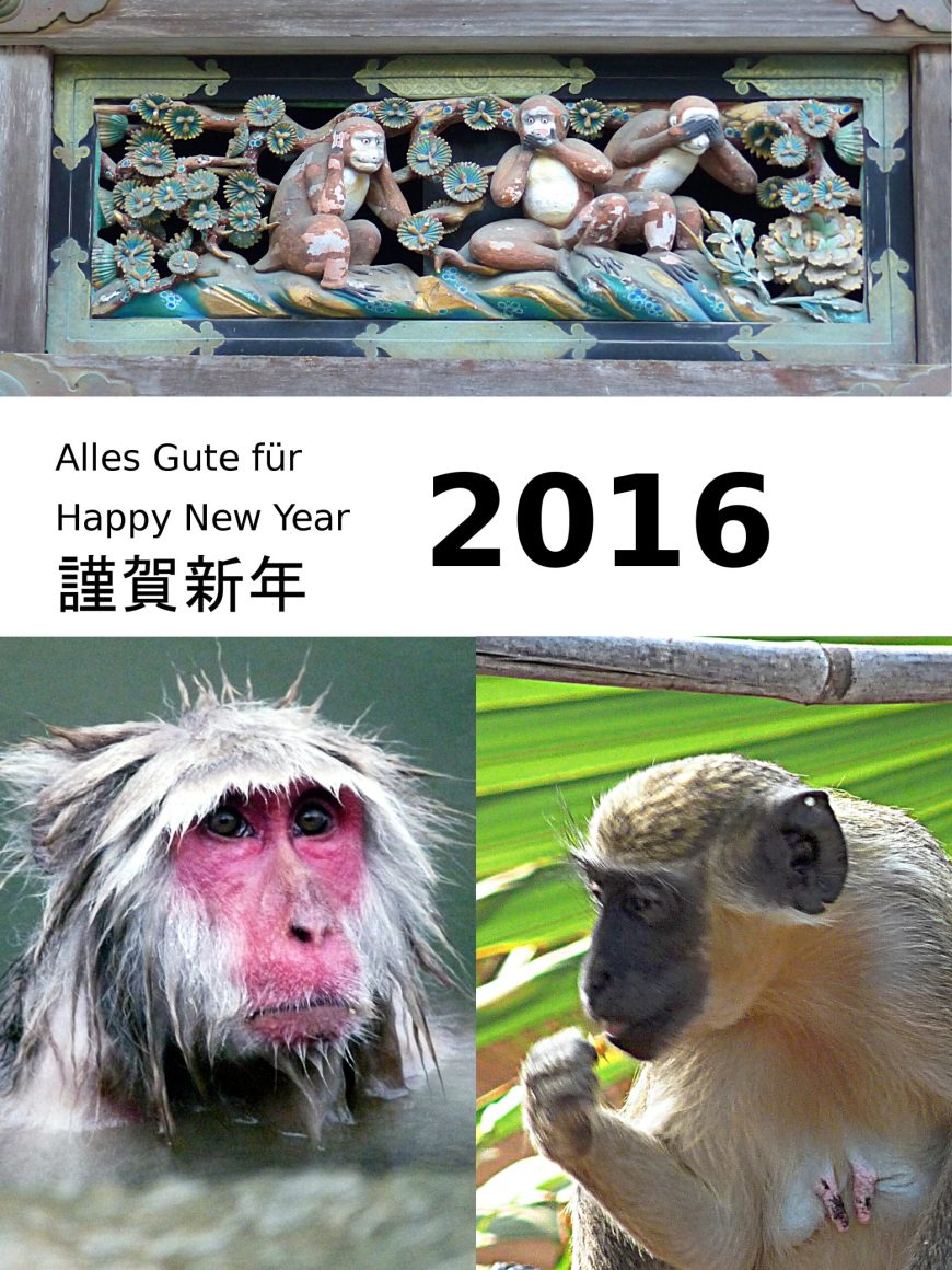 Happy 2016 card with monkeys