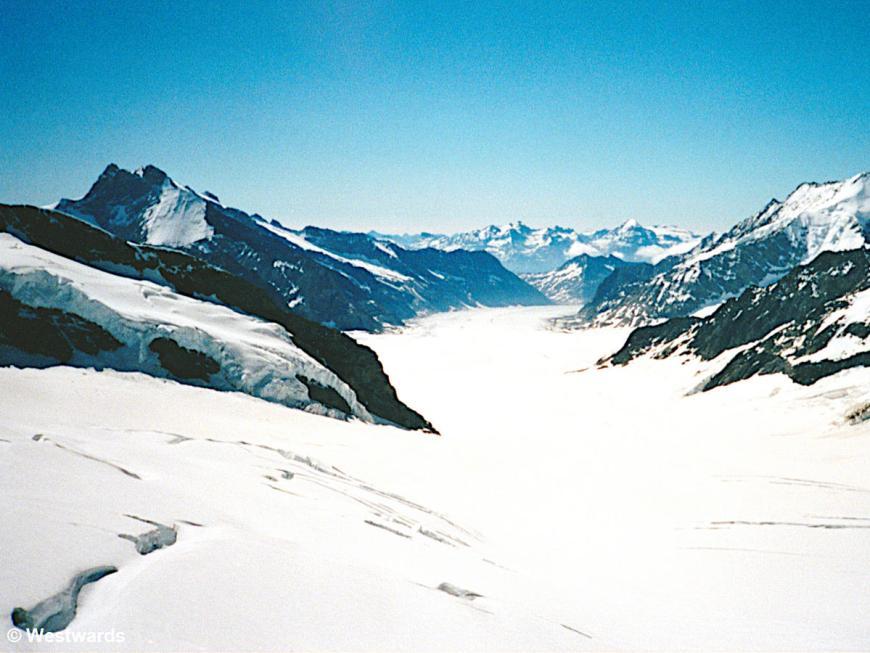 Aletsch Glacier, view from Jungfraujoch