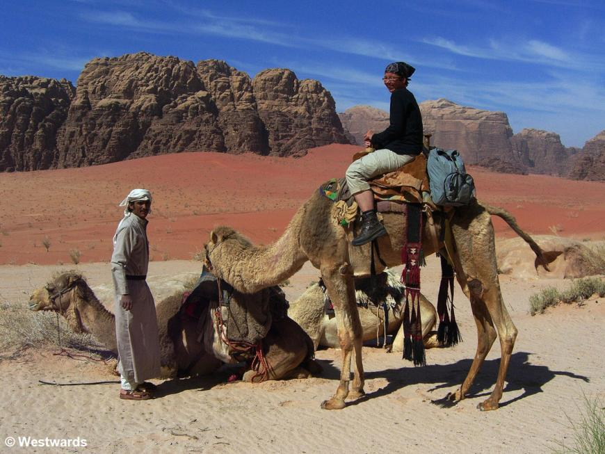 Wadi Rum bedouin camels and tourist