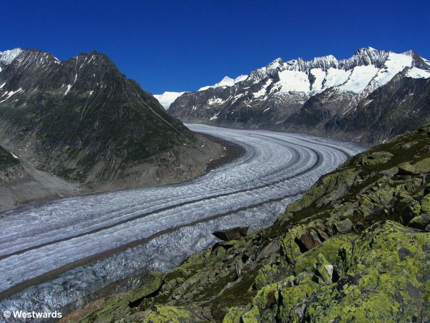 view of the Aletsch Glacier from above