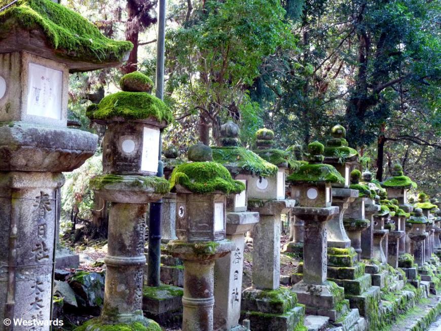 20101013 Nara Kasuga lanterns 1180569
