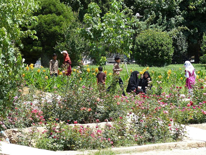 Baghe Eram Persian garden in Shiraz