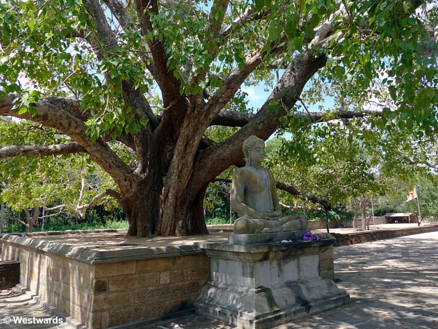 20160128 Anuradhapura Abhayagiri Dagoba Buddha  P1230842