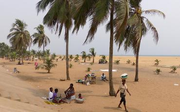 Locals relaxing under palm trees at Lome beach