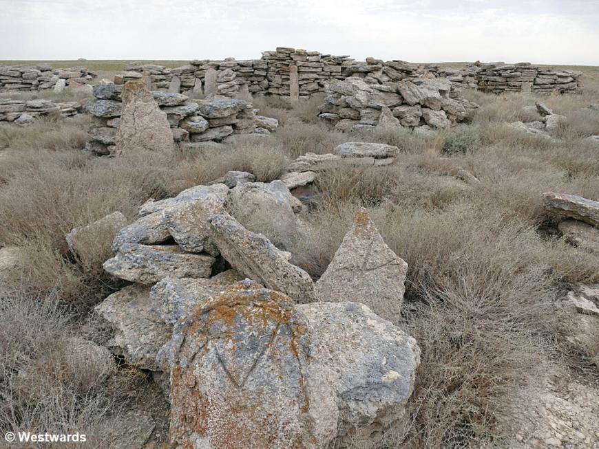 20180709 Aralkum Nomadenfriedhof P1550107