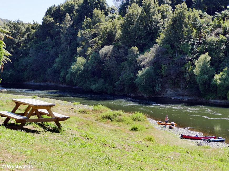 20190211 Whanganui River day2 P1620771