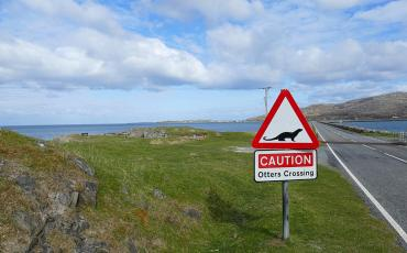 Caution otter sign at the Eriskay causeway