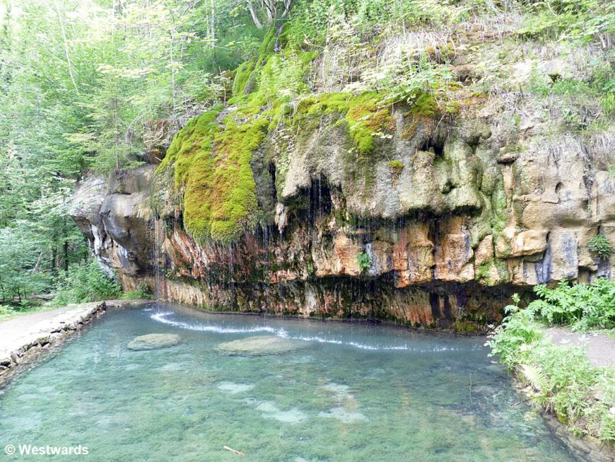 Spring on the Mullerthal trail