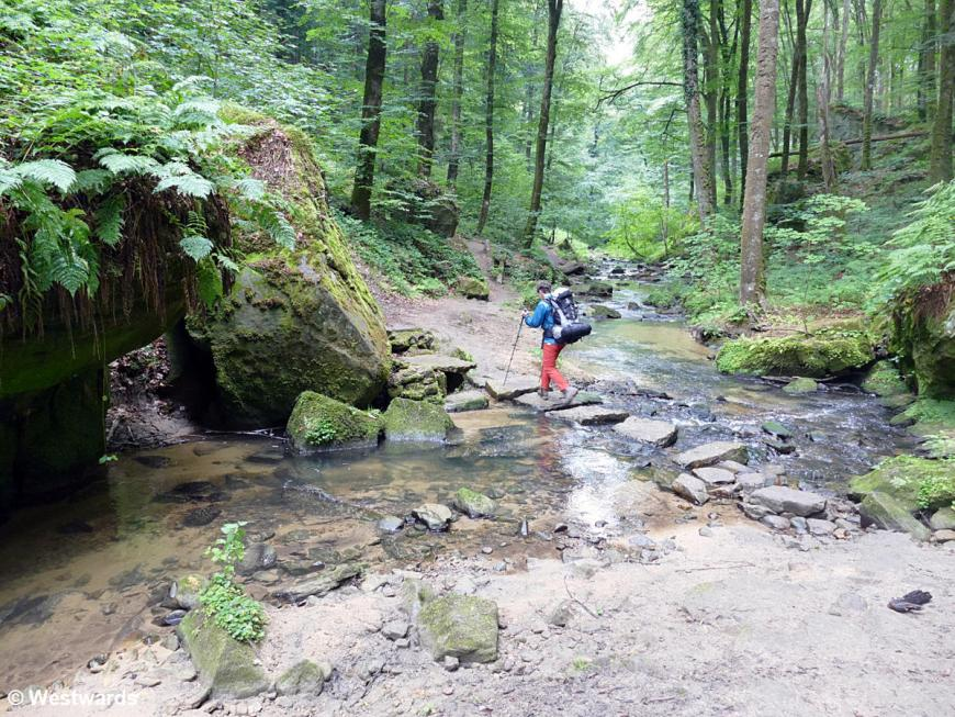Hiker on the Mullerthal trail near Beaufort