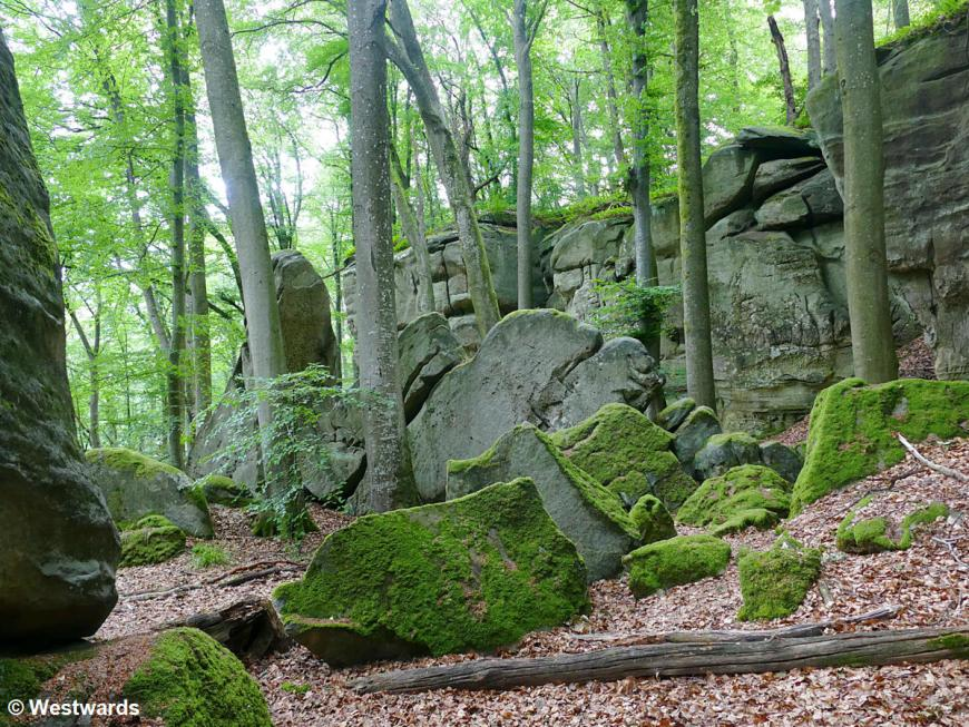 Mossy rocks on the Mullerthal trail