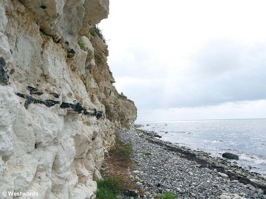 Below the cliffs of Stevns Klint