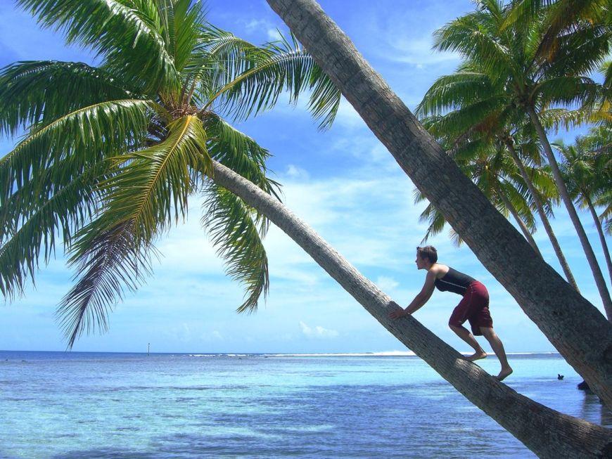 Oceaniagallery_frenchpolynesia