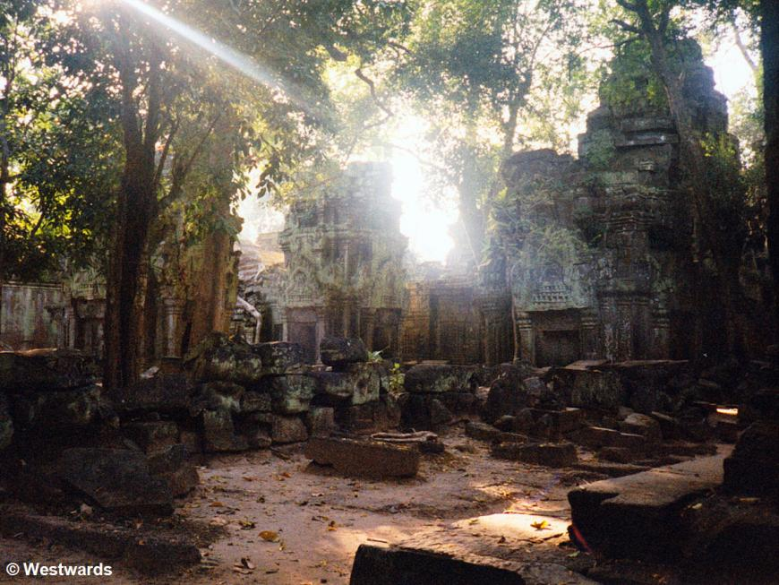 Overgrown temple Ta Prohm of Angkor Wat in 2001, empty at noon