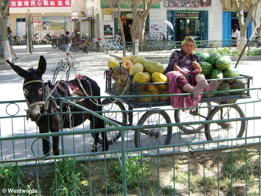 Melon stall with donkey