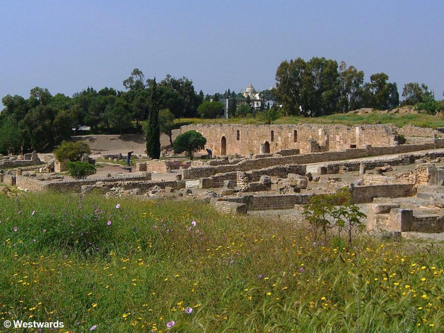 20070425 Carthage Parc des Villas Romaines1