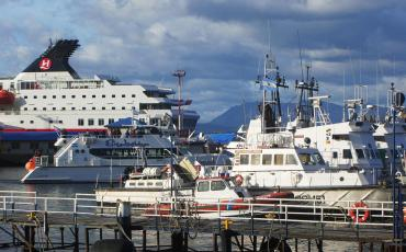 Ushuaia harbour with visiting cruise ships