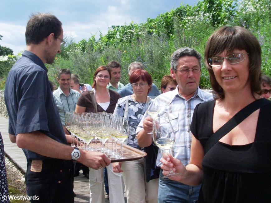 Krems Sandgrube 13 wine tasting